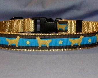 Golden Retriever collar