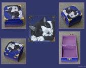 Under the Stars - Midnight Black and White Cat Wooden Trinket Box