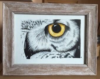 Owl watercolours framed