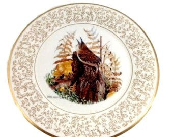 Vintage Gorham Limited Edition Bone China Plate by Don Whitlatch Nature Portraits America House Wren 11 Inch