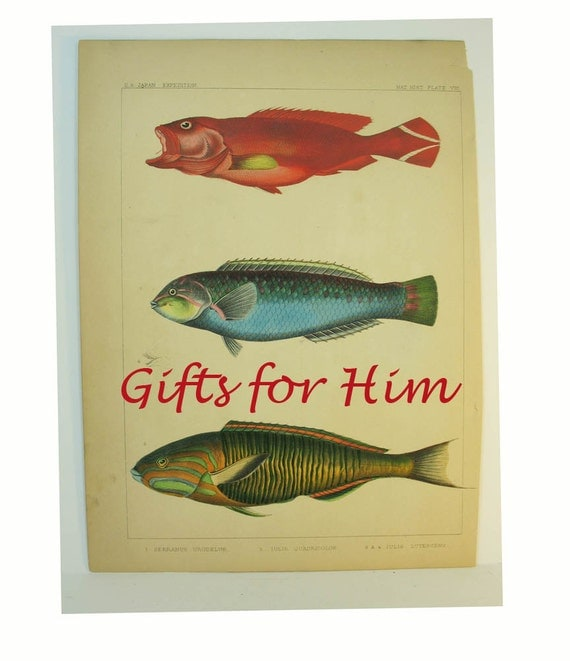 Reserved please do not buy gifts for him fish art by for Fishing gifts for him
