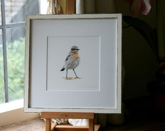 Pipit - Limited edition giclee print from original pastel drawing by Imogen Man