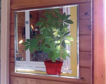Academy Art Mirror Graphic Art Mirror Dimensional Art Mirror Plant Mirror