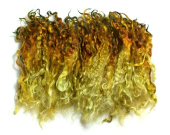 Autumn Beech – Hand dyed Teeswater wool locks – separated, washed and dyed fleece for spinning or felting – green and brown (10g)