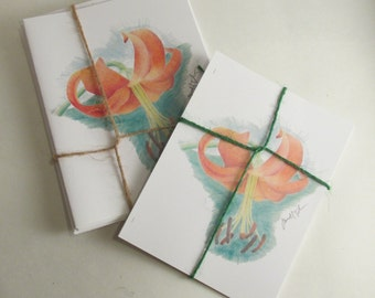 Day Lilly Colored Pencil Illustration Note Cards and Post Cards (C004)