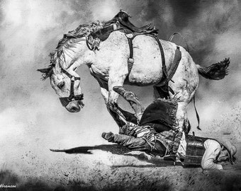 Horse Art Cowboy Rodeo Photography Cowboy Saddle Bronc Rider  Matted Black and White