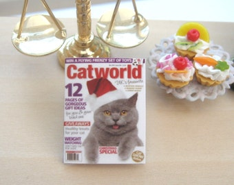dollhouse  cat magazine  12th scale miniature