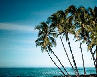 Beach decor, Island decor, Palm tree print, Blue art, Kailua Kona, Hawaii, She shed, Travel Photography, Tropical art // Hawaii Palm Trees