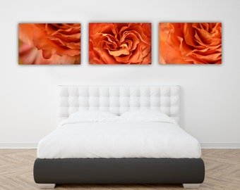 Flower Photograph, Three print Set, Orange Rose Photo Prints, Romantic Abstract Nature Wall Art, Flower Photography, Floral Print Grouping