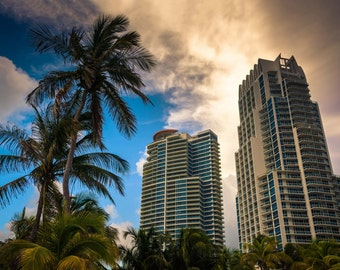Palm trees and highrises at South Beach, Miami, Florida. | Photo Print, Stretched Canvas, or Metal Print.