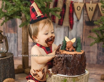 Cake smash  Photo Prop Stump for our Log bed Newborn photography prop First Birthday hand made night stand Table