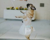 wedding dog dress, dog flower girl white lace bridal with mint roses, optional mint silver bling bowtie