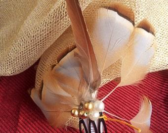 headdress feathers (ref. Julia)
