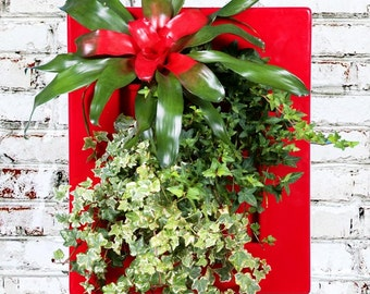 Biovertigo Easy Vertical Garden Kit