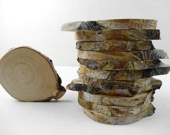 Tree Slices, Iregular Shape Birch Tree Slices, Wood Slices,Rustic Wedding Decor, Woodwork,Crafts Supplies, Rustic Wood, B75,Set of 12