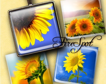 Sunflower flower - Digital Collage Sheet 1.5inch,1 inch,25 mm,20 mm Square printable images.Glass Pendant.Bottlecaps,Scrapbooking,gift