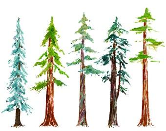 Tree growth chart Etsy