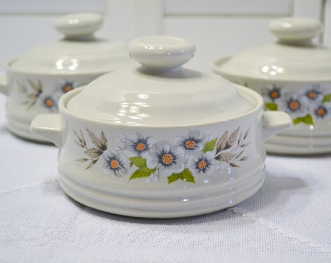 Vintage Heavenly Bake Serve N Store Bowl with Lid Set of 3 Stoneware Flowers 1980 Japan PanchosPorch