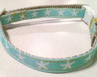 Starfish tiny/toy breed dog collar