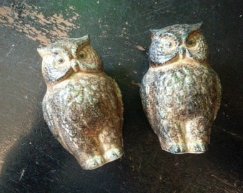 Ceramic Salt & Pepper Owl Set