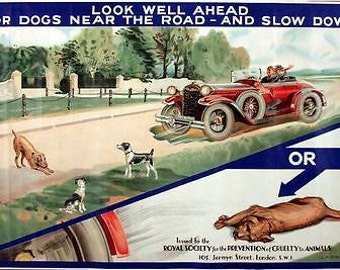 Vintage RSPCA Animal Cruelty Awareness Road Safety Poster A3 Print