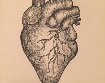 Jourdan's Heart