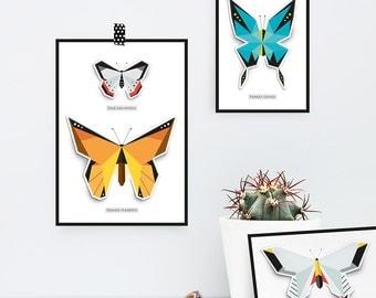 Butterfly Box Frame Pop up Card set