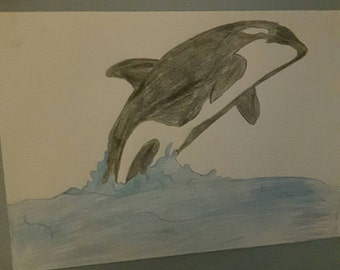 Great orca