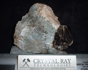 Phologopite mica crystal in a carbonatite Matrix