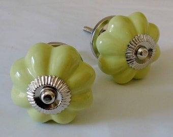Decorative Ceramic Knob,  Light Green Melon Knob with Silver Accent, Drawer Knob, Cabinet Knob