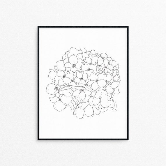hydrangea flower line art printprintablewall decorblack and whitefloral