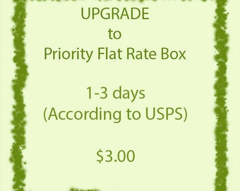 Upgrade to Priority Flat Rate Small Box