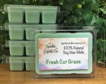FRESH CUT GRASS Soy Wax Melts - Scented Wax Tarts - 1 Package - Clean Scent - Spring - Summer