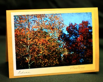 """All Occasion Photo Card   """"Trees"""""""