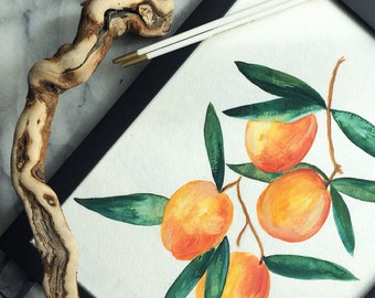 Peachy Apricots // Original WATERCOLOR PRINT FRUIT Peaches Apricots Summer Gallerywall