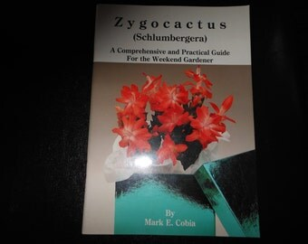 Zygocactus (Schlumbergera) w/Free Shipping