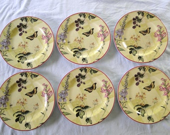 Sweet Briar Rose Dinner Plates by Tracy Porter - Set of Six