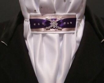 Equestrian Pzazz Euro-style stock tie in purple and silver