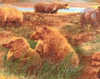 "Fleece ""Bears"" throw, blanket, rich colors. 60""x70"". Back camoflauge. Monogram extra"