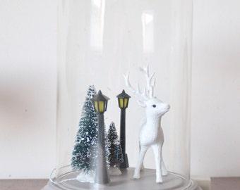 Globe deer, cabinet of curiosity, deer,