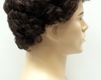 Brown Short Curly Men's Wig. Synthetic Fashion Wig. [57-301-Tom-6]