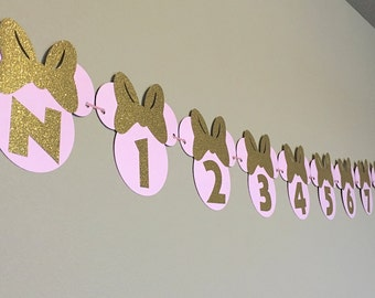 Minnie Mouse 12 Month Banner, Minnie Mouse, Pink and Gold, Disney, Custom Banner, Custom Colors, 1st Birthday Banner