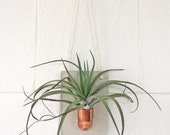Copper + Cement Air Plant Holder | Air Plant Wall Holder | Copper | Planter | Hanging Air Plant Holder | Modern Hanging Planter | Air Plant