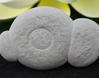 Fairy Stones/Abitibi Concretions ABI-12