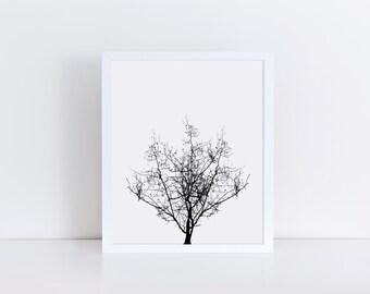 TREE Art, Black and White Tree Wall Art, Minimalist Art, Tree Drawing, Tree Artwork, Printable Art, Barren Tree Print, Minimalist Wall Art