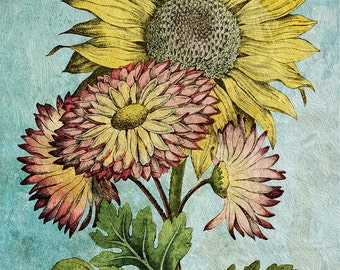 Sunflower decor sunflower art sunflower gift botanical print sunflower kitchen decor sunflower print sunflower Cotton Canvas & Paper Canvas