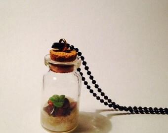 Living Terrarium Pendant Succulent Necklace with Tiger Eye Gemstones