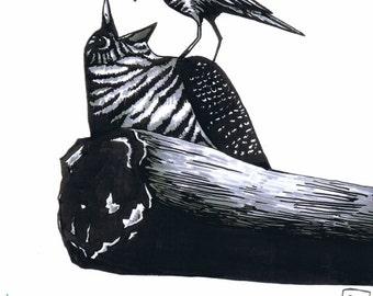 Cuckoo Print A5