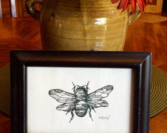 Original Pen and Ink Insect Drawing, Black and White Bug Artwork, Signed Insect Artwork