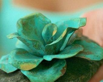 Copper Beach Rose